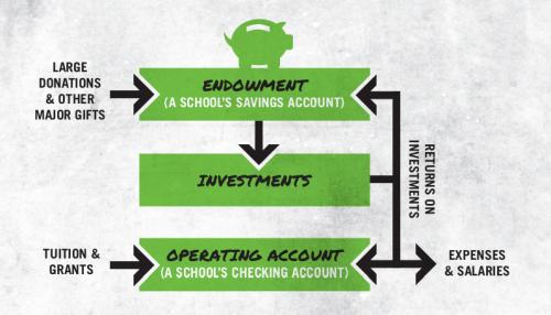 Understanding_University_Endowments[1]