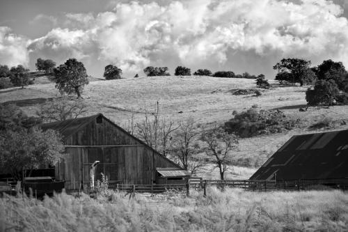 california-farmland--black-and-white-peter-tellone